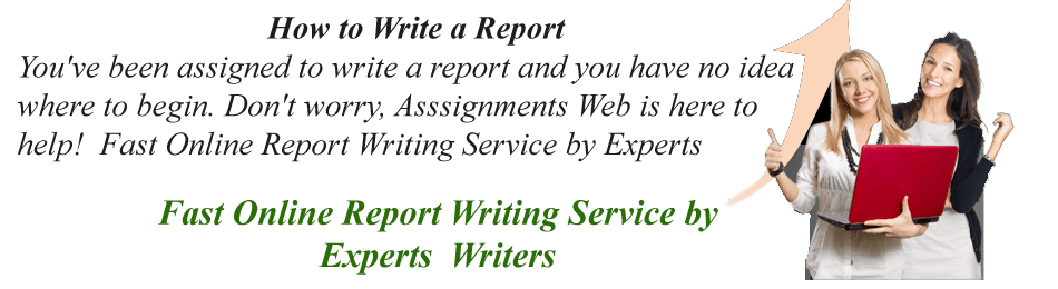 Report Writing Assignment Help